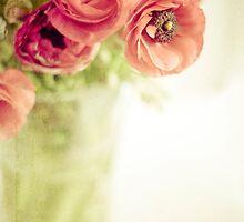 ~ Sweet Light ~ by karenanderson