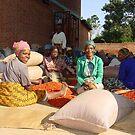 Malawi: chilli sorting women by Anita Deppe