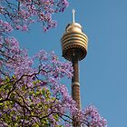 Jacaranda Tower by Erik Schlogl