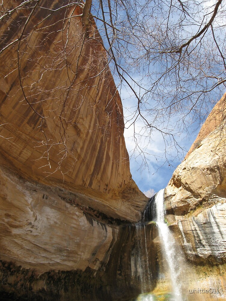 Calf Creek Falls: Near Escalante, UT by whittie011