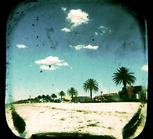 TTV: Through The Viewfinder by Andrew Paranavitana