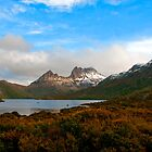 Tasmania by Andrew Dickman