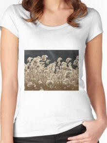 Wind and Light Women's Fitted Scoop T-Shirt
