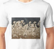 Wind and Light Unisex T-Shirt