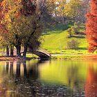 Rusty Autumn morning by Bogdan Ciocsan