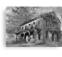 THE HOUSE ON THE LEFT.... Metal Print