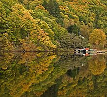 Loch Ard - Autumn Reflections by Derek Fogg