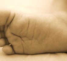 Tiny Sleeping Feet  by Amanda  Stewart