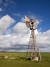 Windmill in OZ by Wendi Donaldson Laird