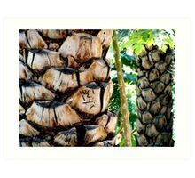 Palm markings Art Print
