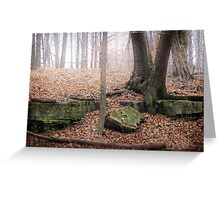 The Woods - Ontario Canada Greeting Card