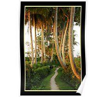 Ubud Palmland dreamland Poster