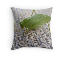 The Last of This Season Throw Pillow