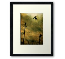 Neighbourhood Watch Framed Print