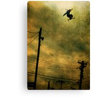 Neighbourhood Watch Canvas Print