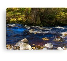 River Cover Canvas Print