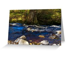 River Cover Greeting Card
