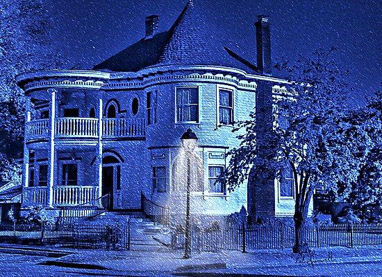 Winter Wonderland by pat gamwell