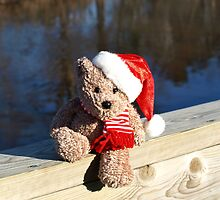 Christmas bear waiting for Santa by Albert1000