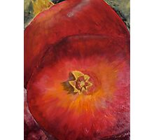 Pomegranates Photographic Print