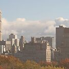Over Central Park II by Tracy Persson