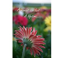 Pink Gerbera daisy with inspirational quote Photographic Print