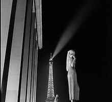 Eiffel Tower at night from the Trocadero, Paris by aldogallery