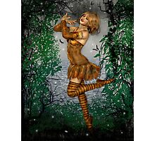 Dance of the Butterflies Photographic Print