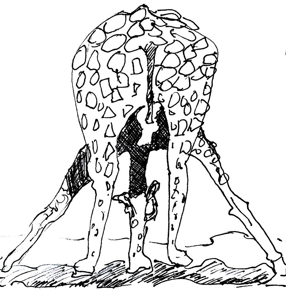 giraffe  by beachshack