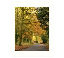 Autumn Road Home Art Print