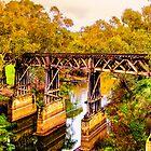 New South Wales - The Gundagai rail bridge by Geoffrey Thomas