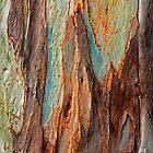 eucalyptus by terezadelpilar ~ art & architecture