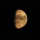Moon by Miriam Banks