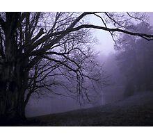 Dark Pond at Moonrise Photographic Print