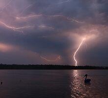 Natural Fireworks by Adam Gormley