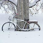 Stationary Bike by Rachel Sonnenschein