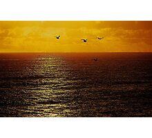 FREEDOM Photographic Print