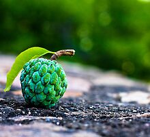 Sugar Apple :) for u all by Primelife