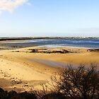 Sand Bar - Barwon Heads Bluff Victoria Australia by Rhonda F.  Taylor