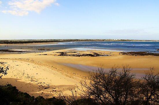 Sand Bar - Barwon Heads Bluff Victoria Australia by Rhonda F.  Taylor