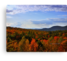 New Yorks Adirondack region XX Canvas Print