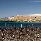Myponga Beach by Topher Webb
