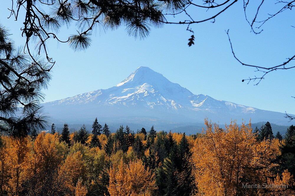 Mt. Hood Fall Splendor by Marita Sutherlin