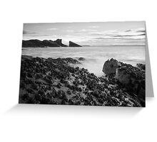 Split Rock Greeting Card