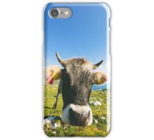 Cow in the Mountains iPhone Case/Skin