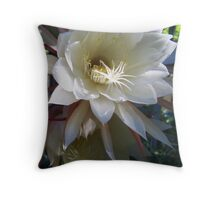 Two Epiphyllum Blossoms Throw Pillow