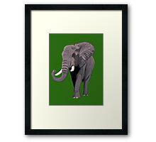 Elephant (Green) Framed Print