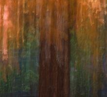 Forgotten Sunday:  Trinity Drive Maple  by Margaret  Clemmer