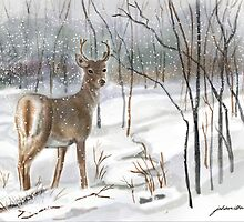 Deer in Snow  by Joan A Hamilton