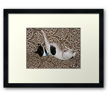 Rupee! Hold that sky up! Framed Print